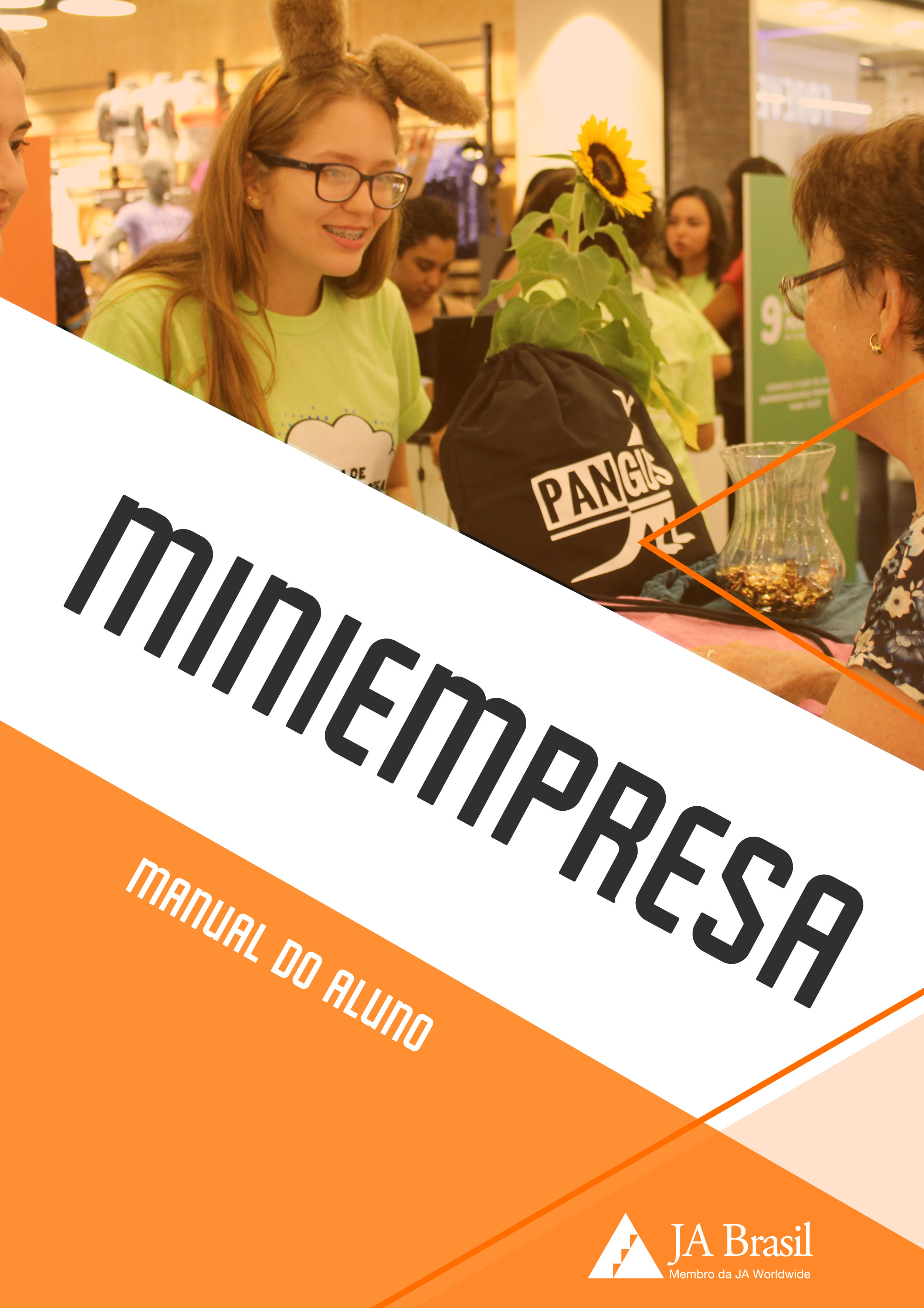 Imagem da notícia Miniempresa