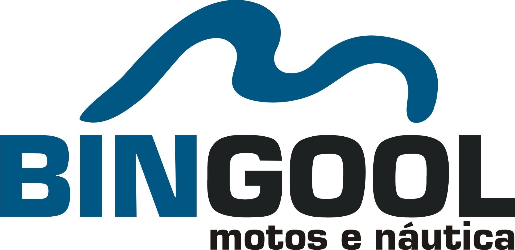 Logotipo BINGOOL